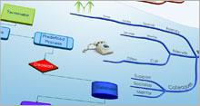flow chart2 - Hướng dẫn và cài đặt bản đồ tư duy IMindMap 6 Full